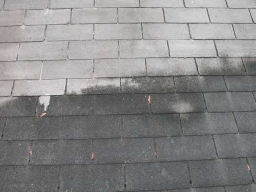 partial close up roof cleaning